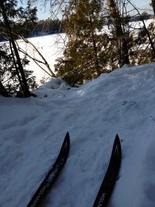 Sewall Woods Trail