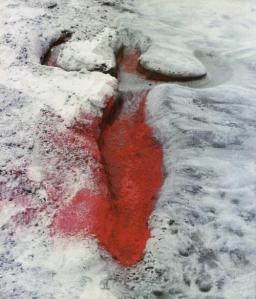 Ana Mendieta Untitled, 1976