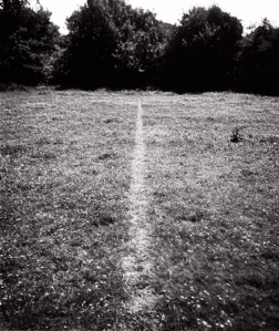 Richard Long, A Line Made by Walking, 1967