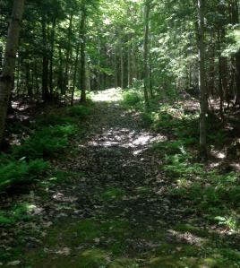 Trails2