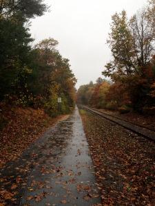10.tracks8_rain